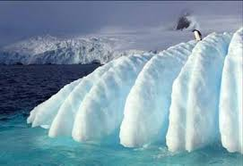 imagenes de la antartida la antartida