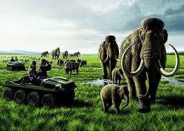 vt wildlife biology student voices
