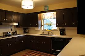 kitchen cabinet transformations interior design elegant dark rustoleum cabinet transformations