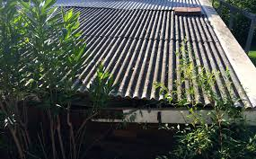 bernie banton foundation asbestos cement corrugated roof wall