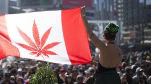 Colorado Flag Marijuana Is Tennessee Next To Legalize Medical Marijuana International