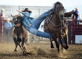 hauk designs peterbilt i like bridles when you pick out a bridle your horse u0027s comfort