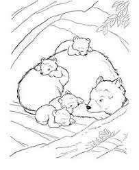 coloring pages animals hibernating hibernating bear color sheet coloring page preschool january