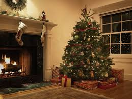 How To Decorate A Real Christmas Tree How To Real Christmas Tree Rainforest Islands Ferry