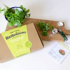 herb growing kit by plant and grow notonthehighstreet com