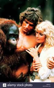 bentley orangutan derek miles stock photos u0026 derek miles stock images alamy