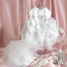 Dog Wedding Dress Dog Wedding Dress And Harness Set Dog Clothes Hub
