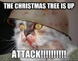 Christmas Cat Memes - army cat memes quickmeme