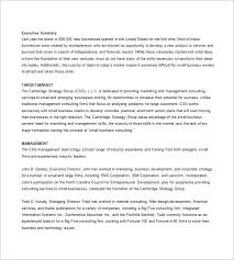 small business participation plan template business plan template