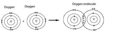 covalent bonding wizznotes com free gcse and cxc tutorials