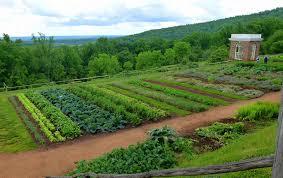 Home Vegetable Gardens by Garden Design With Vegetable Garden Box Ideas U Decoration Home