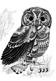 Patterned Flying Owl Drawing Illustration Surreal Illustrations Iain Macarthur Gallery