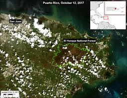 Where Is Puerto Rico On The Map Maap 73 United States U0027 Only National Tropical Rainforest Ravaged
