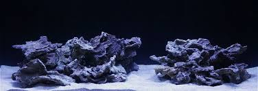 Live Rock Aquascaping Ideas Show Off Your Large Tank Aquascape Page 34 Reef2reef