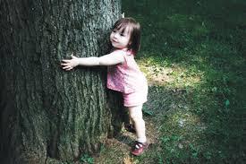 my tree ganga parivar clean ganga green ganga
