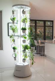 Indoor Vegetable Garden Kit by Best 25 Hydroponic Shop Ideas On Pinterest Regrow Lettuce