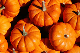 Pumpkin Food by Starbucks Latte Drives Early Pumpkin Foods Craze