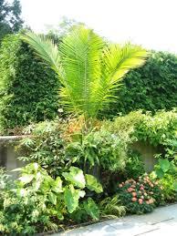 Garden With Trellis Garden Design Garden Design With Trellis Vertical Container