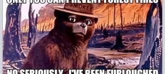 Smokey The Bear Meme Generator - smokey the bear meme the best bear 2018