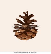 Pinecone Pine Cone Vector Stock Images Royalty Free Images U0026 Vectors