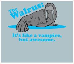 Walrus Meme - funny walrus meme bajiroo com