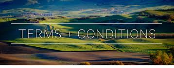 terms and conditions duvine