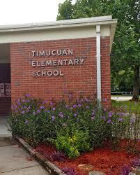 timucuan elementary homepage