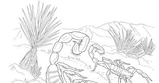 desert animals coloring pages banded gecko in desert coloring