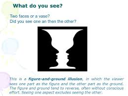 Face Vase Optical Illusion Optical Illusions What Is An Illusion Something That Seems To Be
