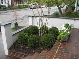small shade garden ideas best idea garden