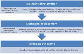 refeeding syndrome articles pediatrics in review