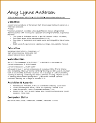 Resume Sample Vice President by Grad Resume Sample Free Resume Example And Writing Download