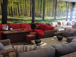 Wall Mural Wallpaper Nature Forest Tree Light Show Photo Pictures Of Murals Sent By Our Clients Buy Prepasted Wallpaper