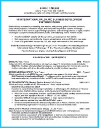 Best Business Resume Format by Best Words For The Best Business Development Resume And Best Job