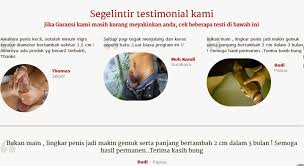 vigrx plus original obat pembesar penis