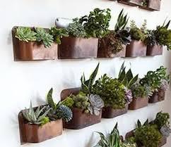 indoor herb garden wall rust wall planter indoor herbs herbs garden and sunroom