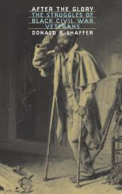 after the glory the struggles of black civil war veterans donald