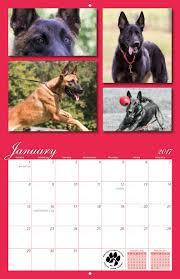 belgian sheepdog calendar malinois ranch rescue 2017 calendar yearbox calendars