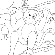 coloring mesmerizing monkey colour 7 coloring