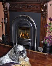 Gas Mantle Fireplace by 18 Best Gas Coal Fireplaces Images On Pinterest Gas Fireplace
