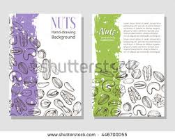 vector background sketches plants various nuts stock vector