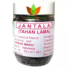 obat jantala tahan lama jamu pria tradisional madura stamina kuat