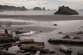 teen killed by log on bandon beach identified oregonlive com
