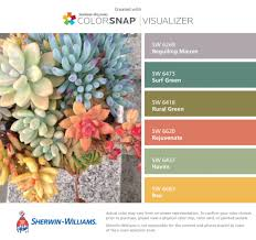 sherwin williams color visualizer nolan painting