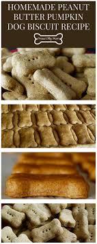 recipe for dog treats best 25 pumpkin dog biscuits ideas on diy dog treats