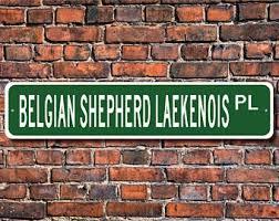 belgian shepherd malaysia belgian shepherd etsy