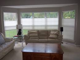 Levelor Blinds Lowes Interior Alluring Faux Wood Blinds Lowes For Stunning Window