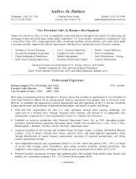 resume template administrative manager job specifications ri sales manager resume template fungram co