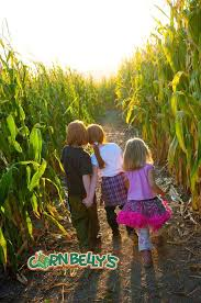 2017 cornbelly s corn maze and pumpkin festival tickets in lehi