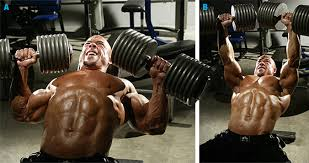 How To Do Dumbbell Bench Press Barbell Vs Dumbbell Bench Press The Age Old Debate Ignore Limits